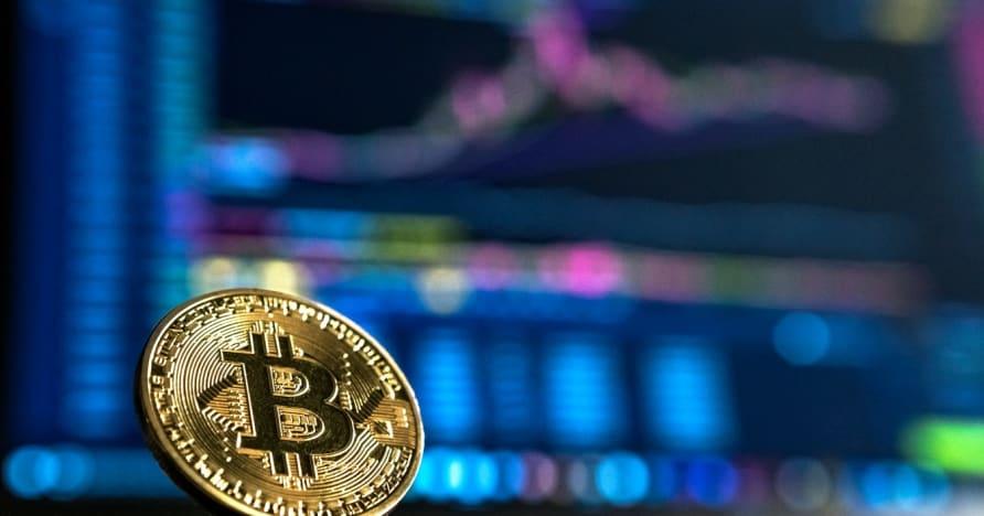 Panduan Pemula untuk Perjudian Cryptocurrency